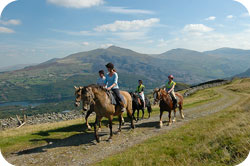 Snowdonia Riding Stables